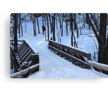 "Winter's Last ""Leg"" :) Canvas Print"