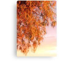 """Autumn in """"Natural Orton effect""""  Canvas Print"""