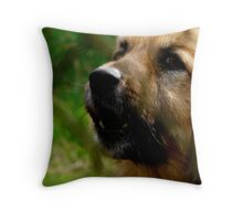 Behind barrs 2 Throw Pillow