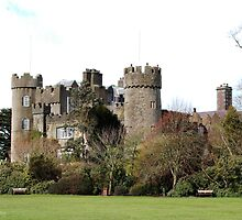 Malahide Castle by Tausha