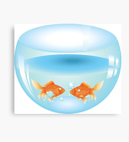 Gold fish swimming in the water in a fishbowl Canvas Print