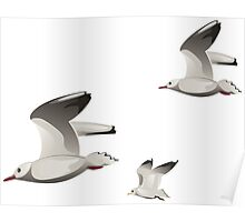 Flying seagulls  Poster