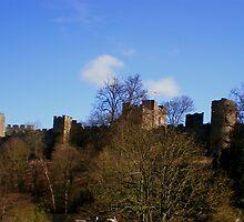 Ludlow Castle 3 by karenkirkham