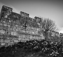 Daffodils and City Walls by Nicole Petegorsky