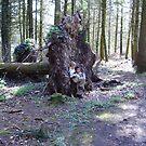 Tree Fellers by brucemlong