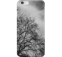 Trees in the Circus of Bath iPhone Case/Skin