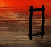Sunsets of Florida by Micki Ferguson
