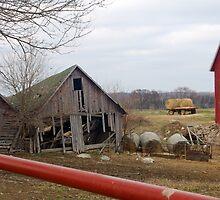 Old Barn by BarbHoffman