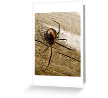 Flamboyant Widow Greeting Card