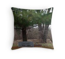 Peaceful Resting Place Throw Pillow