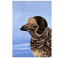 A Fashionable Hen Photographic Print