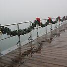 Fog on the Boardwalk 3 by marybedy