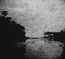 Amazon river by Carolina Vianna