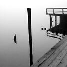 Foggy Dock 25 BW by marybedy