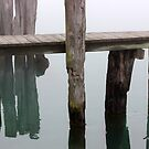 Old dock and Old Pilings in Fog by marybedy