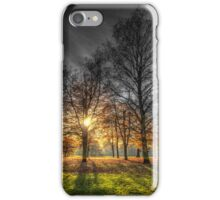Greenwich Park London iPhone Case/Skin