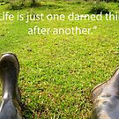 Life is just one darned thing after another... by gracelouise