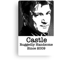Castle -Ruggedly Handsome Canvas Print