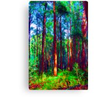 Psychedelic RainForest Series #1 - Yarra Ranges National Park , Marysville Victoria Australia Canvas Print