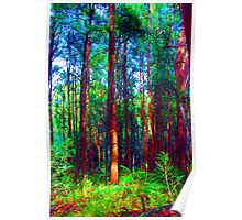 Psychedelic RainForest Series #1 - Yarra Ranges National Park , Marysville Victoria Australia Poster