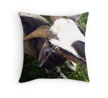 Lester the Goat Throw Pillow