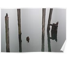 Old Piling Reflections 6 Poster