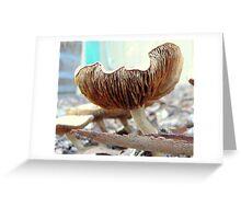 Fungi VI Greeting Card