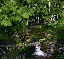 Cornish Holy Well by Celtic Mystery