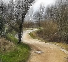 The trail by John Edwards
