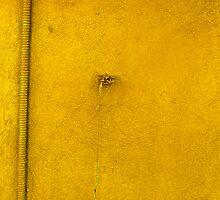 yellow by aska2