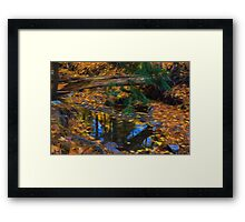 Impressions of a Little Forest Creek in the Fall Framed Print