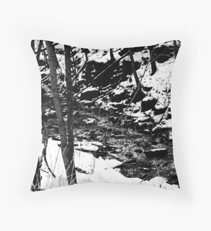 icey drink? Throw Pillow