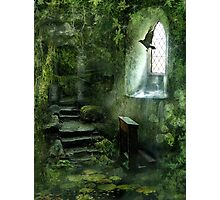 The Chapel in the Woods Photographic Print