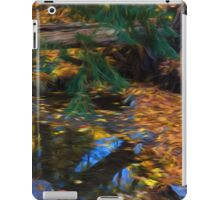 Impressions of a Little Forest Creek in the Fall iPad Case/Skin