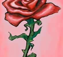 Red Rose by Kevin Middleton