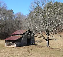 Old Barn In Young Harris, Georgia. by kevint