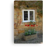 tulips,broadway Canvas Print