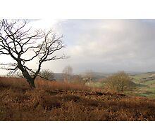 croft ambrey,herefordshire Photographic Print