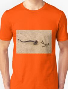 Beach dried seaweed on the sand Unisex T-Shirt