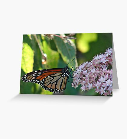 DIFFERENT ANGLE Greeting Card
