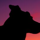 Dog Silhouette by Mark Andrew Turner