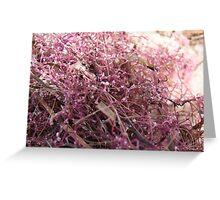 Pink Seaweed Greeting Card