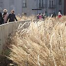 High Line, Winter View, New York City's Elevated Park and Garden  by lenspiro