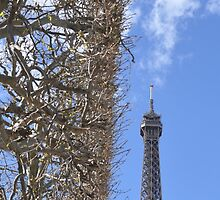 Hedge Next To Eiffel Tower by MissCellaneous