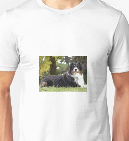 Australian Shepherd Tri Color Unisex T-Shirt