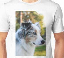 Australian Shepherd Blue Merle Unisex T-Shirt