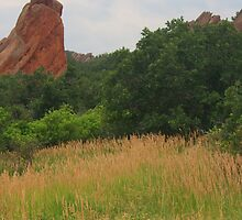Roxborough by Paul Gana