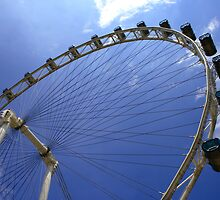 The Singapore Flyer by BengLim