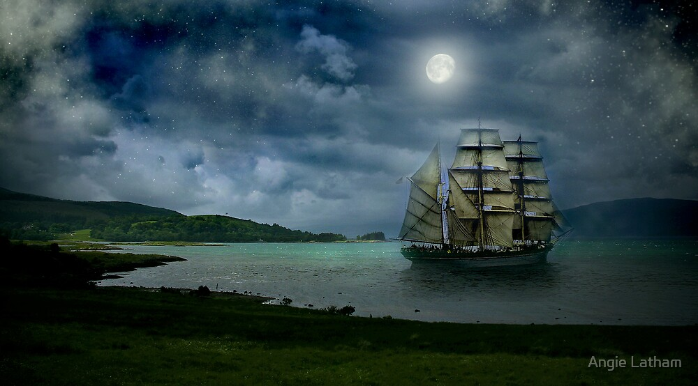 Safe Harbour by Angie Latham