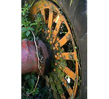 The Colour Wheel Photographic Print